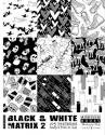 Black & White Matrix Vol. 2 incl. DVD Paperback Edition